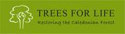Trees for life logo final horizontal green